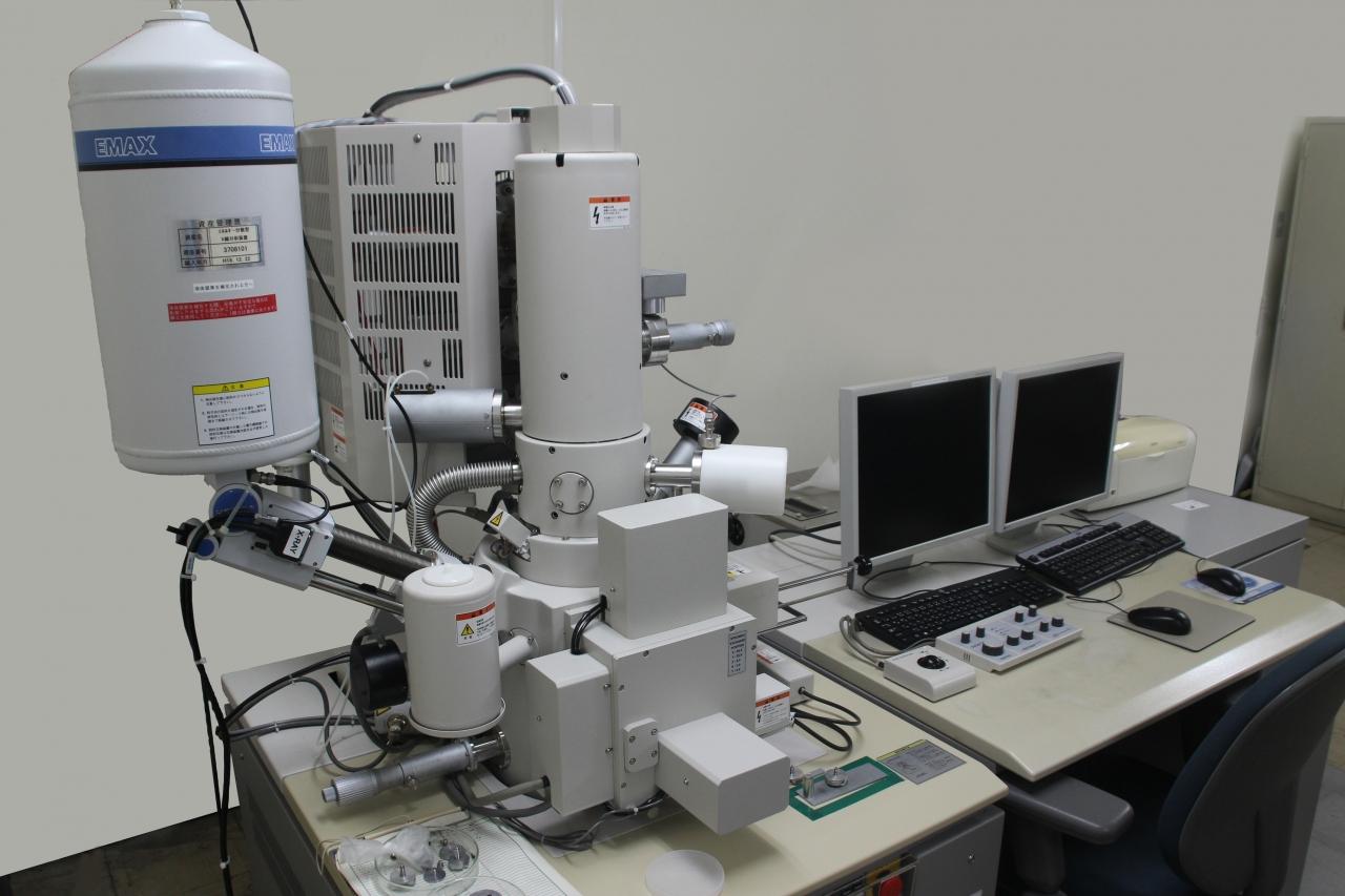 電子顕微鏡 FE-SEM
